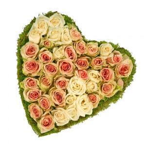 Coração de Rosas Rosa