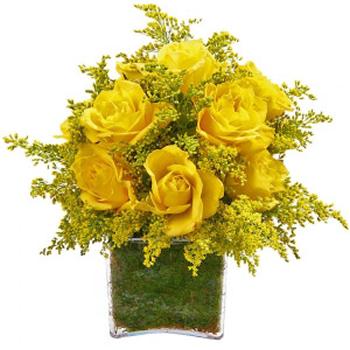 Cubo de Rosas Amarelas