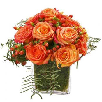 Cubo de Rosas Laranja