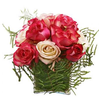 Cubo de Rosas Rosa em Vários Tons