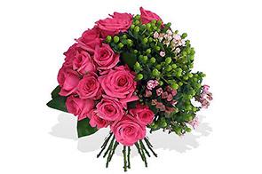 As melhores rosas de Angola