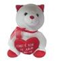 Urso Peluche Amo-te grande