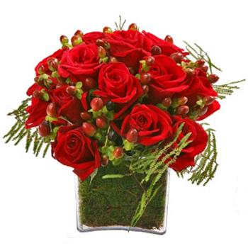 Cubo de Rosas Encarnadas