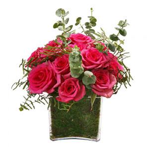 Cubo de Rosas Rosa Fuchsia