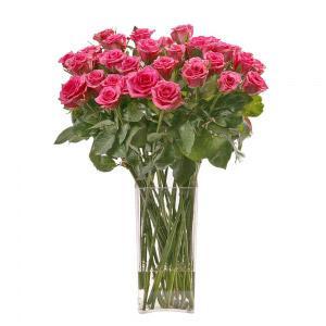 Jarra de Rosas Rosa Fuchsia